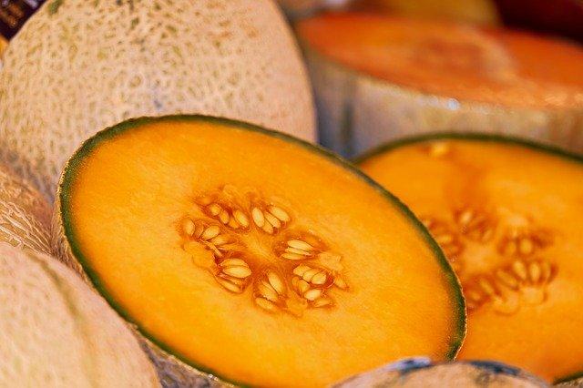 melon d'hiver bébé